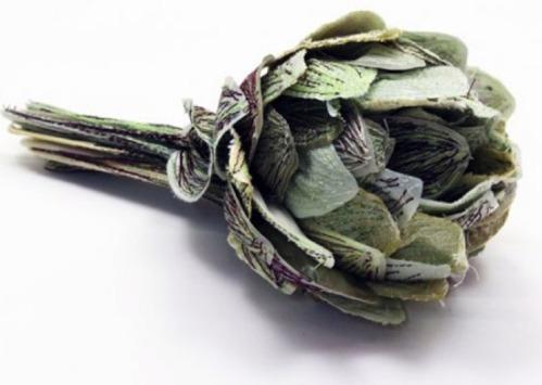Vegetables011