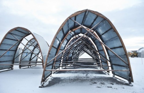 Icehotel1-550x355