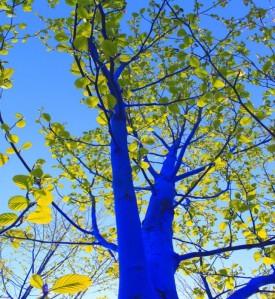 Blue-2-640x697