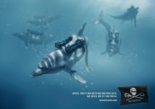 Sea3-640x452