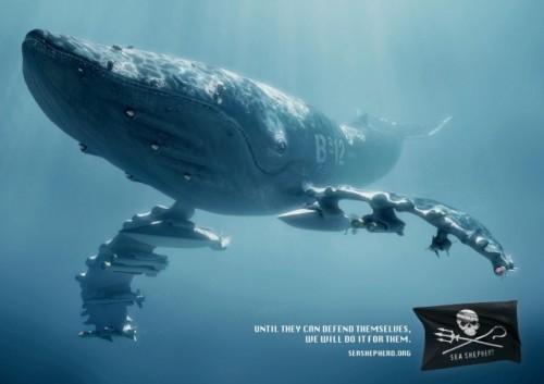Sea4-640x452