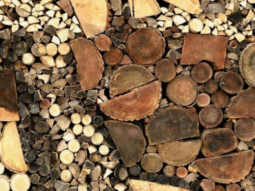 Dead-wood-installation3-640x480