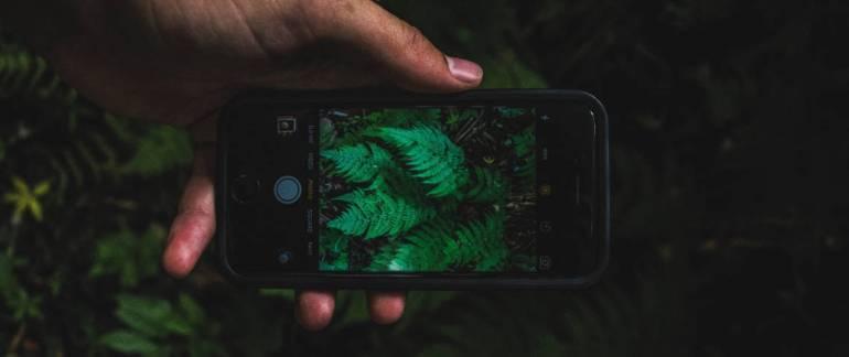 smartphone-green-1140x480